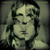 Kings of Leon - Use Somebody artwork